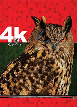 پرونده ویژه 4K