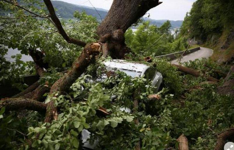 خودرو تسلا S در یک حادثه دلخراش جان دو سرنشین خود را نجات داد