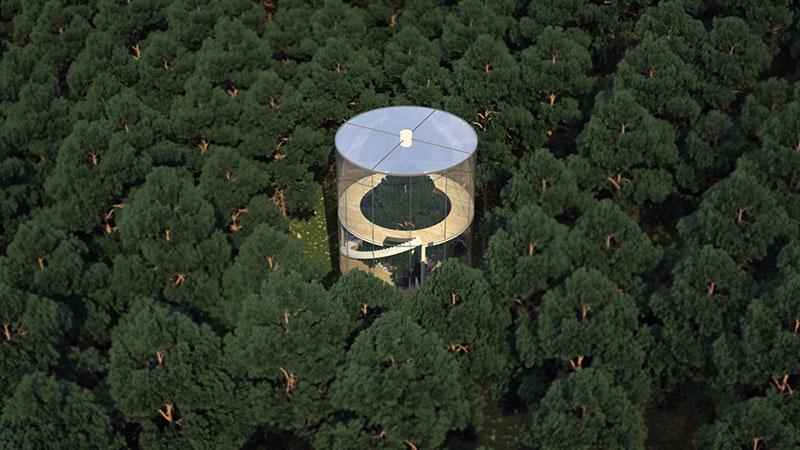 گالری عکس: خانهای شیشهای گرداگرد یک درخت