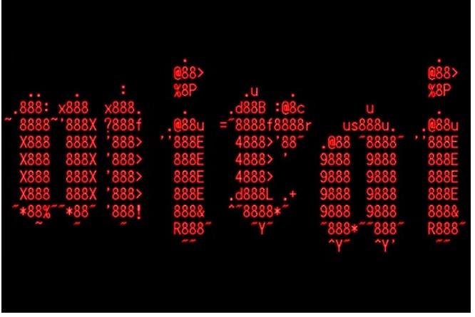در یک عملیات تحقیقاتی پیچیده نویسنده بدافزار Mirai شناسایی شد