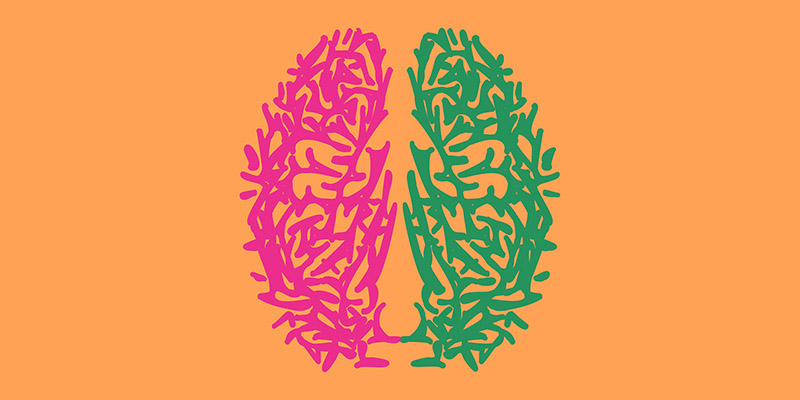 چگونه مغز خود را دوباره فرمتبندی کنیم؟