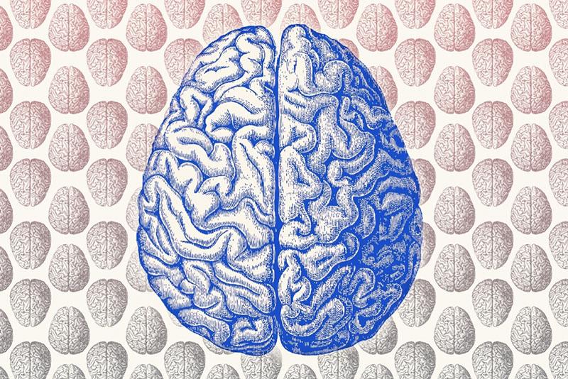 اگر میخواهید قدرت مغزتان را افزایش دهید؛ این ده مطلب را بخوانید!
