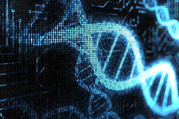 الگوریتمها، بنیاد دانش کامپیوتر