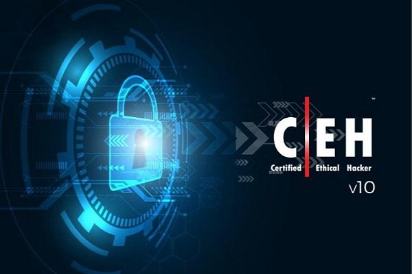 آموزش CEH (هکر کلاه سفید): آشنایی با مثلث امنیت و معروفترین بردارهای حمله