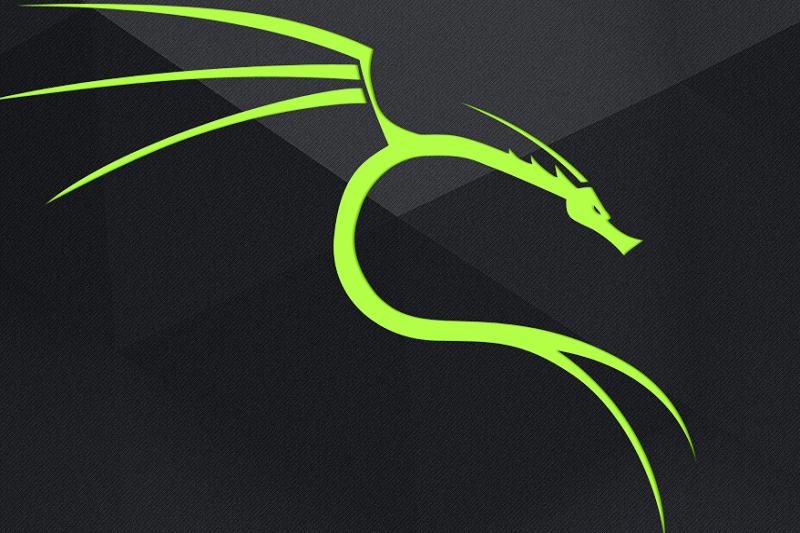 چرا کالی لینوکس یکی از محبوبترین توزیعهای لینوکسی است؟