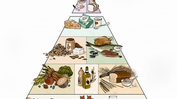 سنجش میزان کالری غذا با موبایل