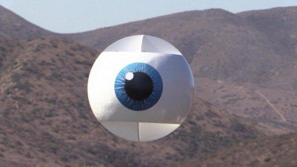 ویدیو: یک چشم بزرگ پرنده