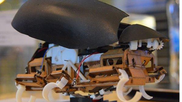 ویدیو: اولین روبات سوسکنمایی که ۱.۵ متر پرش میکند