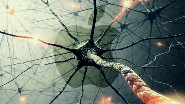 مغز مصنوعی پنهان اپل