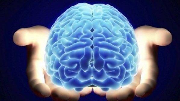پادکست: مغز انسان آنالوگ است یا دیجیتال؟