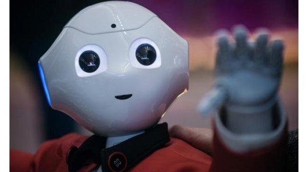 ۵ شغلی که در اولین گام به تصاحب روباتها درخواهند آمد