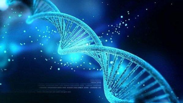 ۲۱۵ پتابایت اطلاعات روی یک گرم DNA ذخیره شد!