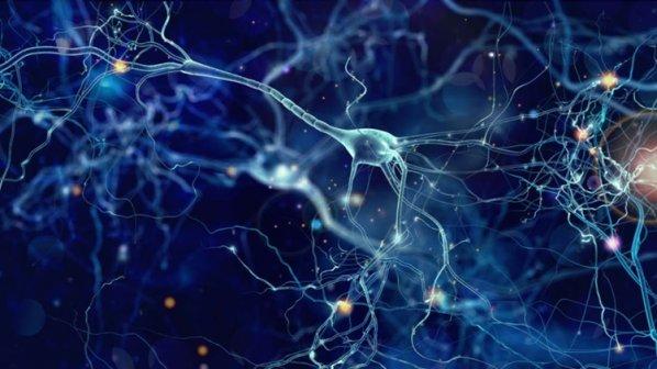 دانشمندان: خاطرات تلخ را از مغز خود پاک کنید