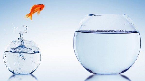 موفقیت اکتسابی است نه انتصابی + 10 راهکار