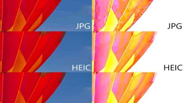 AV1 شمارش معکوس برای بازنشستگی فرمت Jpeg را آغاز کرده است