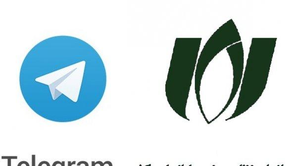 نامه نظام صنفی رایانهای به دبیر شورای عالی فضای مجازی درباره فیلترینگ تلگرام