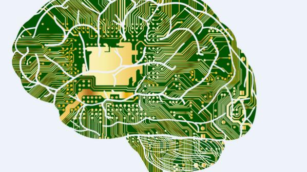 ریاضیات چگونگی کارکرد مغز را توضیح میدهد
