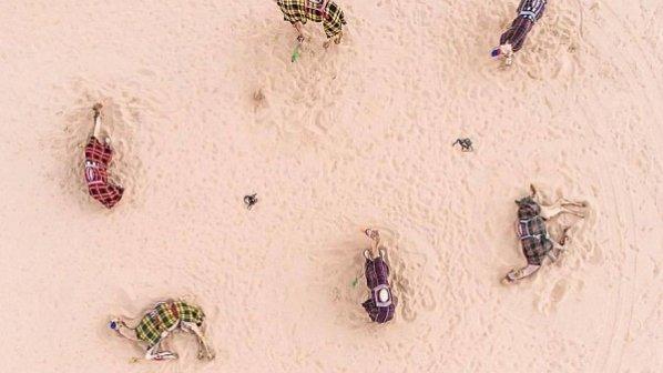 گالری عکس: تصاویری نفسگیر از تقابل انسان و طبیعت در صحرای دبی