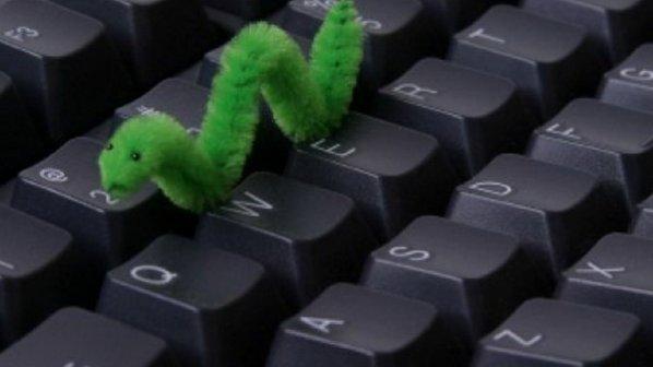 کرم اینترنتی چیست و چه خطراتی با خود به همراه دارد