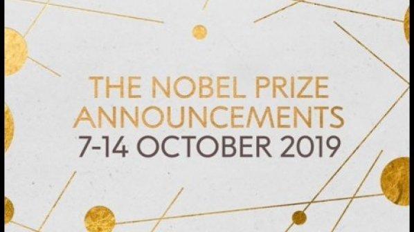 برندگان جایزه نوبل 2019 چه کسانی هستند و چه دستاوردی داشتهاند؟