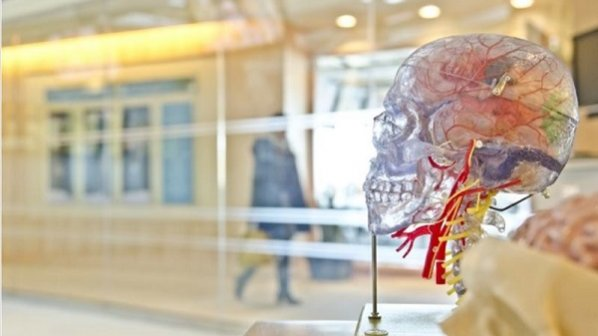 راهنمای آشنایی با شبکههای عصبی و نحوه پیادهسازی آنها