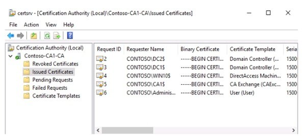 چگونه فرآیند نوسازی گواهیهای منقضی شده در ویندوز سرور 2019 را خودکارسازی کنیم؟