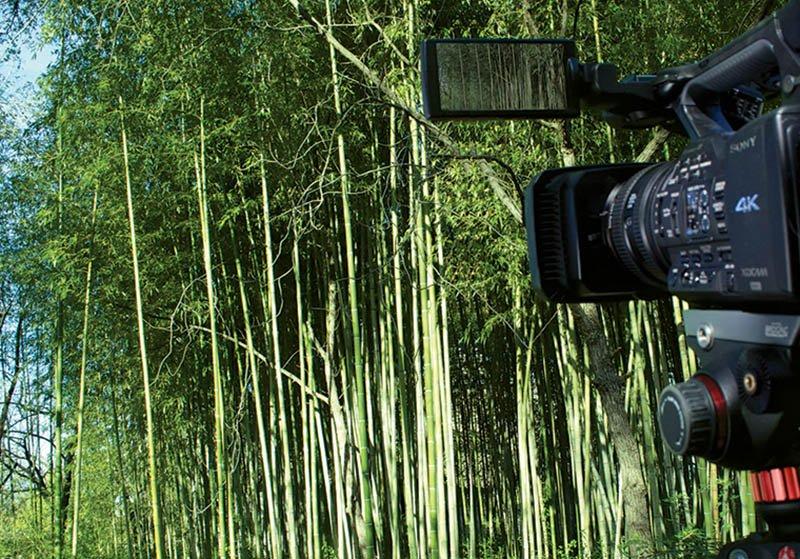 هشت راه مختلف برای استفاده از ویدیوی 4K