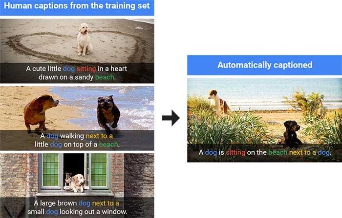 هنر جدید گوگل: ببین و بگو!