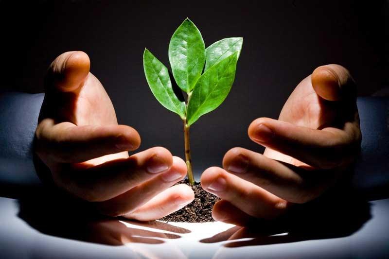 ۳ گام ساده برای رشد ۱۰ برابری یک استارتاپ