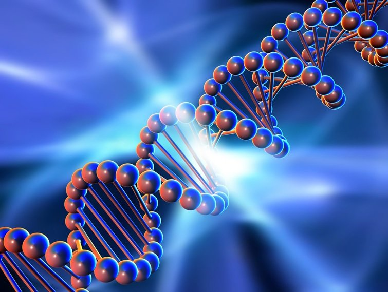 کامپیوترهای مبتنی  بر DNA ساخته میشوند