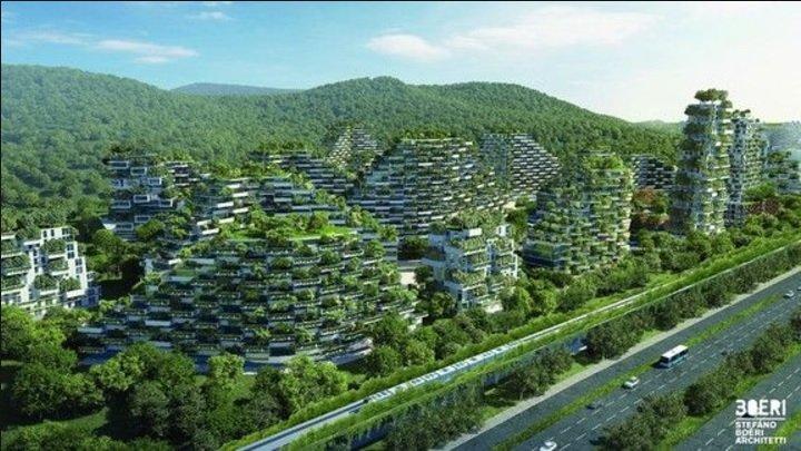 چین به دنبال ساخت اولین شهر جنگلی جهان است