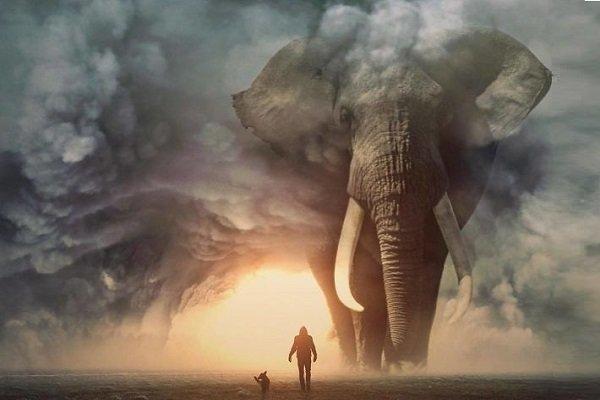 گالری عکس: اگر حیوانات چندین برابر ما بودند؛ دنیای حیوانات غولپیکر با دستکاریهای دیجیتالی