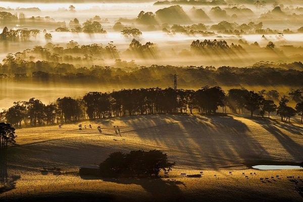 طبیعت استرالیا: 4 فصل ؛ 12 عکس