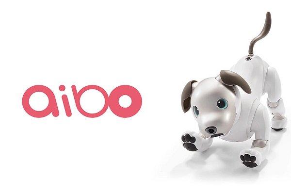 آیبو روبات سگنمای سونی شما را شگفتزده میکند + ویدیو