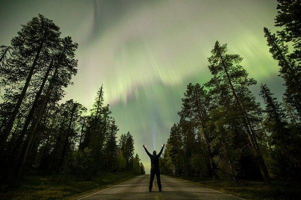 گالری عکس: مجموعهای از زیباترین عکسهای گرفته شده رویترز از طبیعت در سال 2017