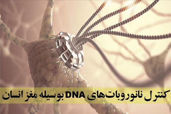 کنترل نانو روباتهای DNA به وسیله مغز انسان