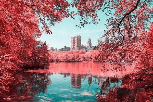 گالری عکس: زیبایی مناظر طبیعی با هنر سوررئال عکاسی مادون قرمز