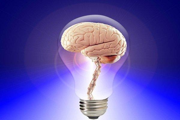چگونه انسانها از صد درصد توانایی مغز خود استفاده میکنند