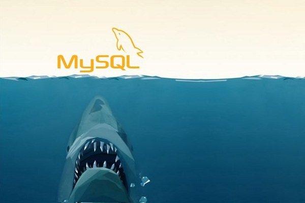 10 ابزار ضروری برای مدیران سرورهای MySQL