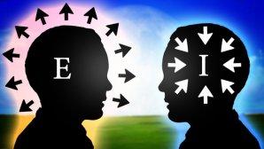 شما درونگرا هستید یا برونگرا؟ نقش این ویژگیها در موفقیت شما چیست؟