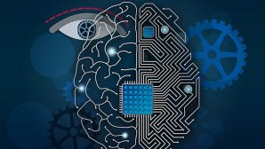 هوش مصنوعی در تعامل با اشیای هوشمند، غیرهوشمند و جاندار