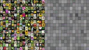پروژه شناسایی گلها با اسمارتفون