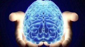 جدیدترین روشهای تصویربرداری مغز در ایران معرفی شدند