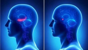 افراد افسرده توانایی زیادی در یادآوری وقایع منفی دارند