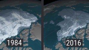 تماشا کنید: چگونه پوشش یخی قطب شمال ناپدید میشود