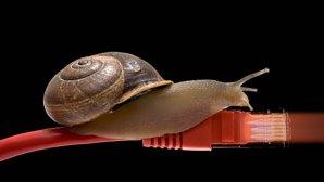 اگر بهدنبال اینترنت سریعتری هستید، این ده مطلب کاربردی را بخوانید!