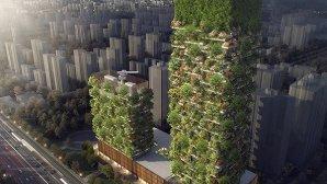 اولین جنگل عمودی آسیا با تولید ۶۰ کیلوگرم اکسیژن در روز + عکس