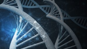هوش مصنوعی در حال ساخت داروهایی برای درمان بیماریها است