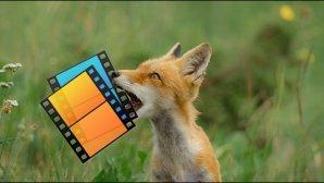 با Firefox Send فایلهای حجیم خود را با امنیت به دیگران برسانید