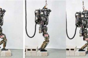 روباتهای چابک